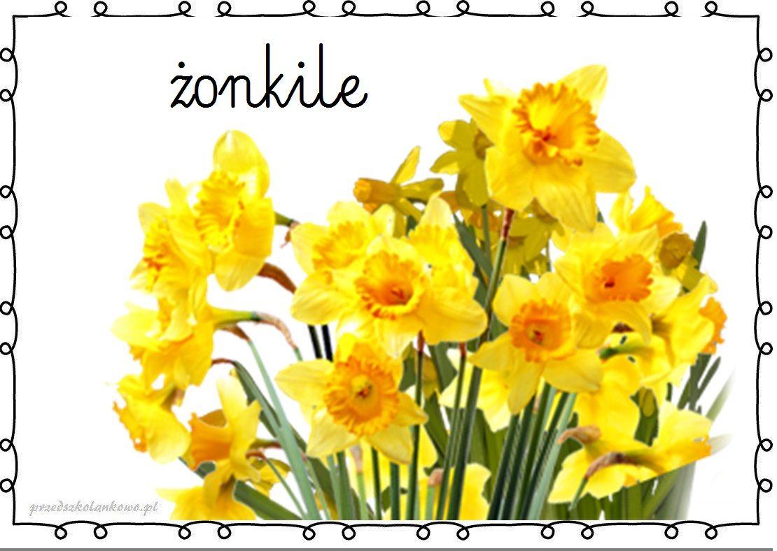 Wiosenne Kwiaty Plansze Zestaw 1 Przedszkolankowo Montessori Projects Teacher Inspiration Educatio
