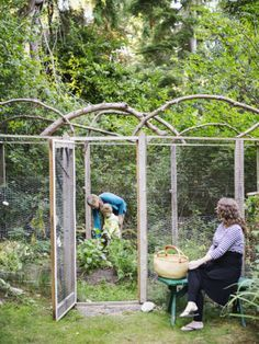17 Best images about Fencing ideas on Pinterest Gardens Deer