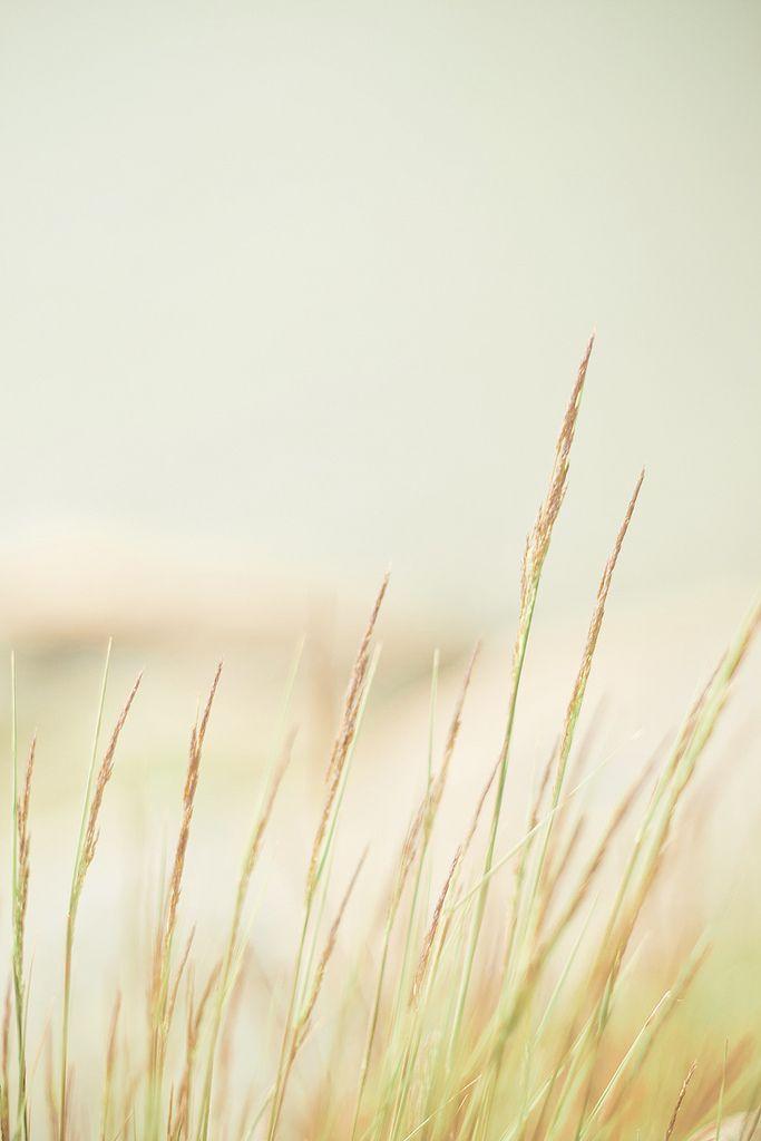 On Shore | Flickr - Photo Sharing!