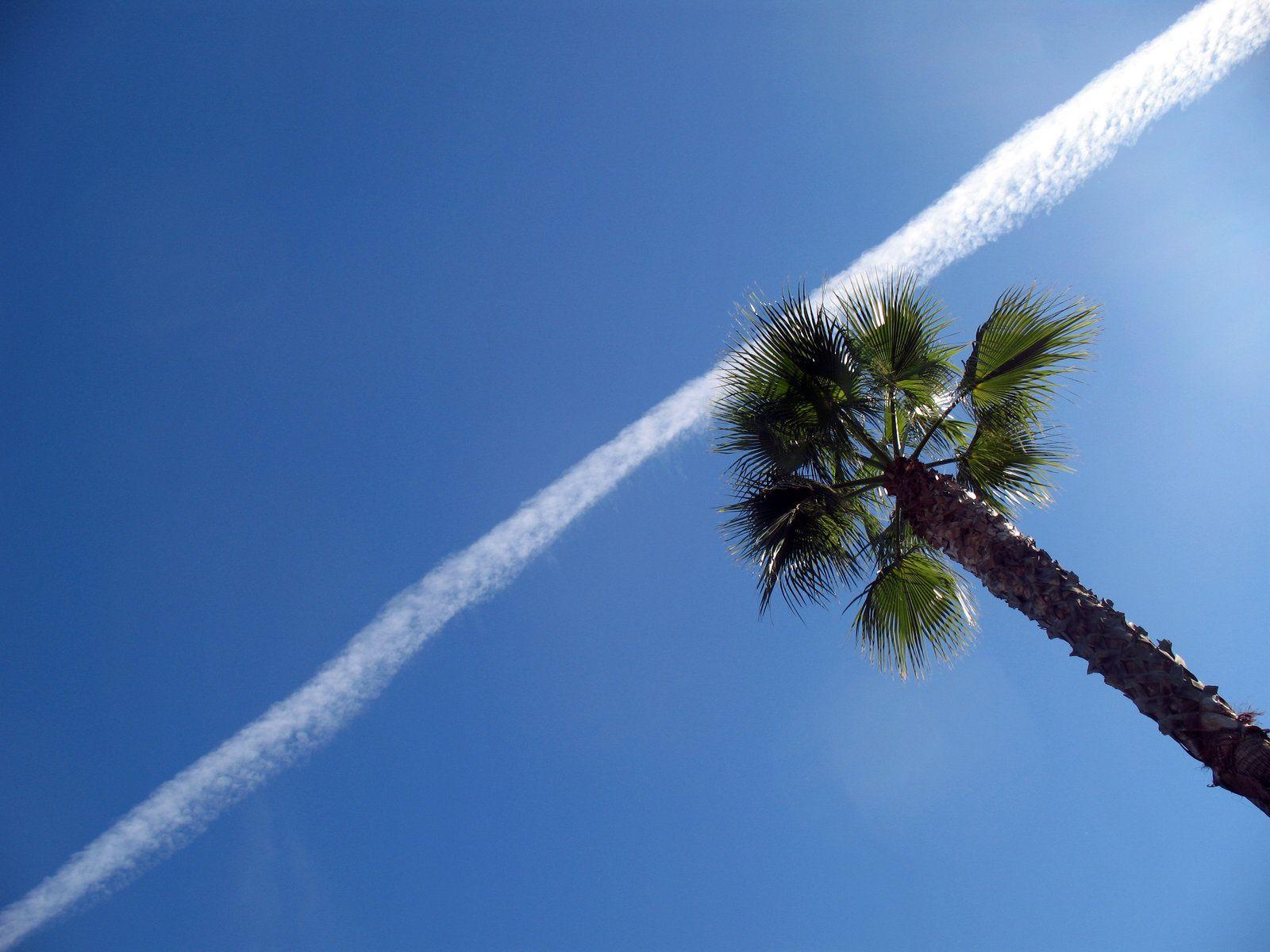 Diagonal Skies