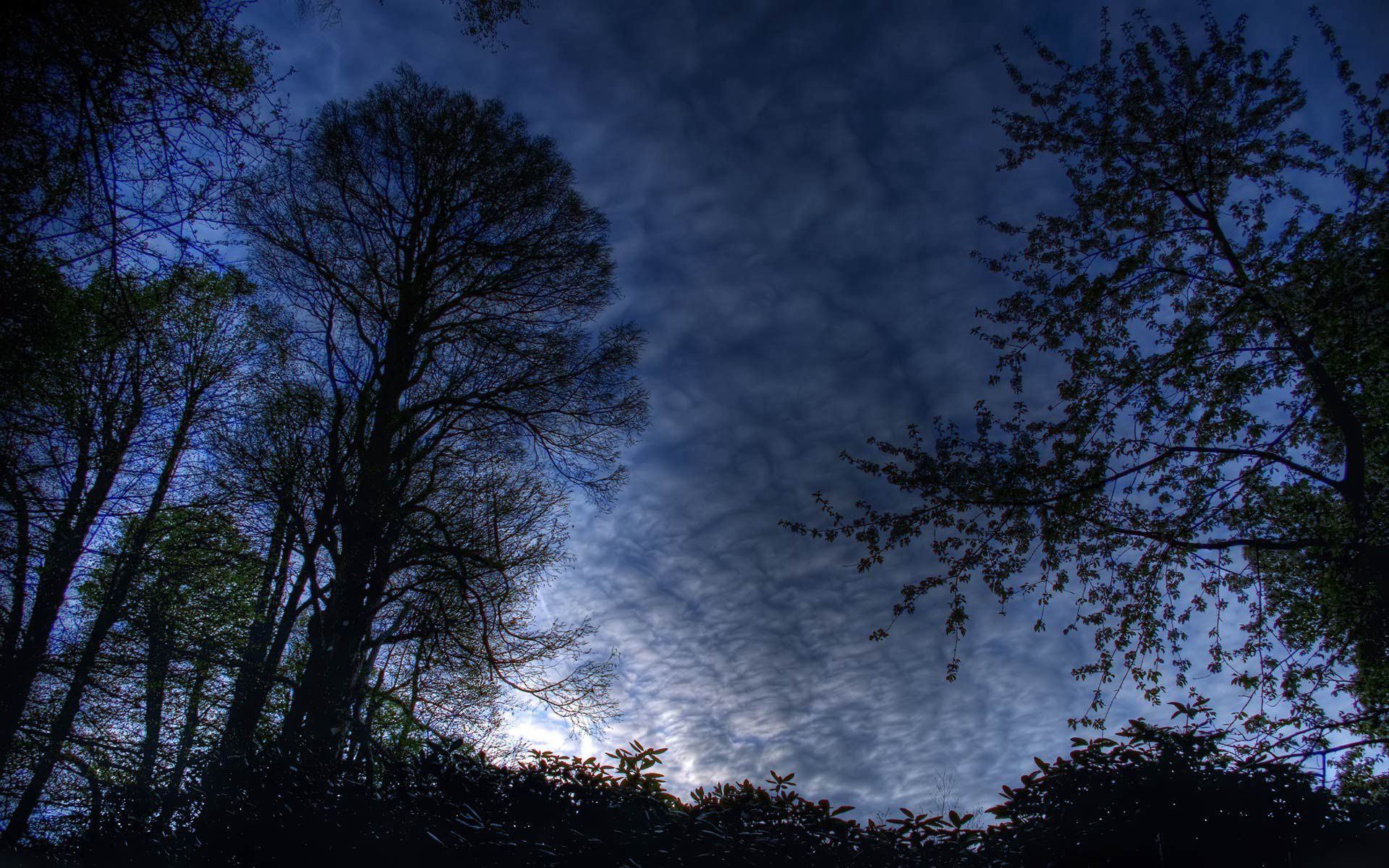 Sextion Bts Night Sky Wallpaper Nature Photography Sky
