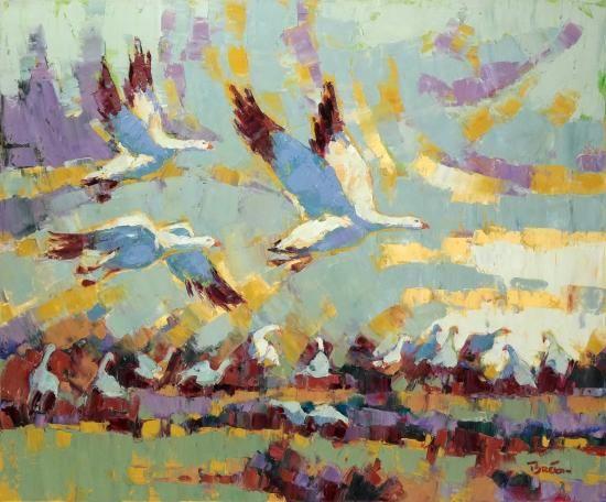 Yvon Breton snow geese northern birds