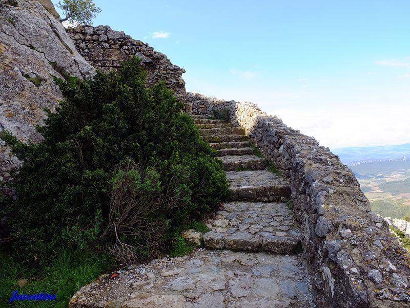 Château de Quéribus (Aude), 728 m. d'alt., le 9 Mai 2013. (pour ...
