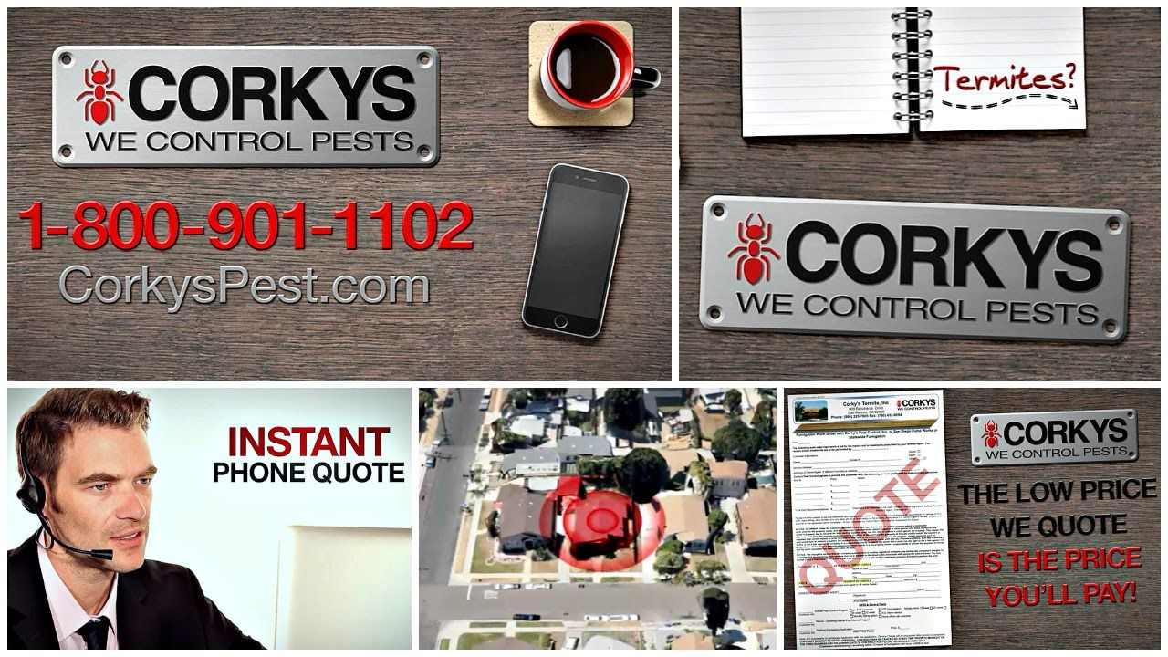 Call for a Termite Quote! Termites, This is us quotes