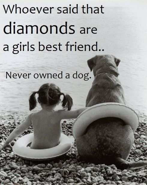 Whoever Said Diamonds Are A Girlu0027s Best Friend Never Had A Dog Cute Girl  Best Friends Dog Pets Friendship Quotes
