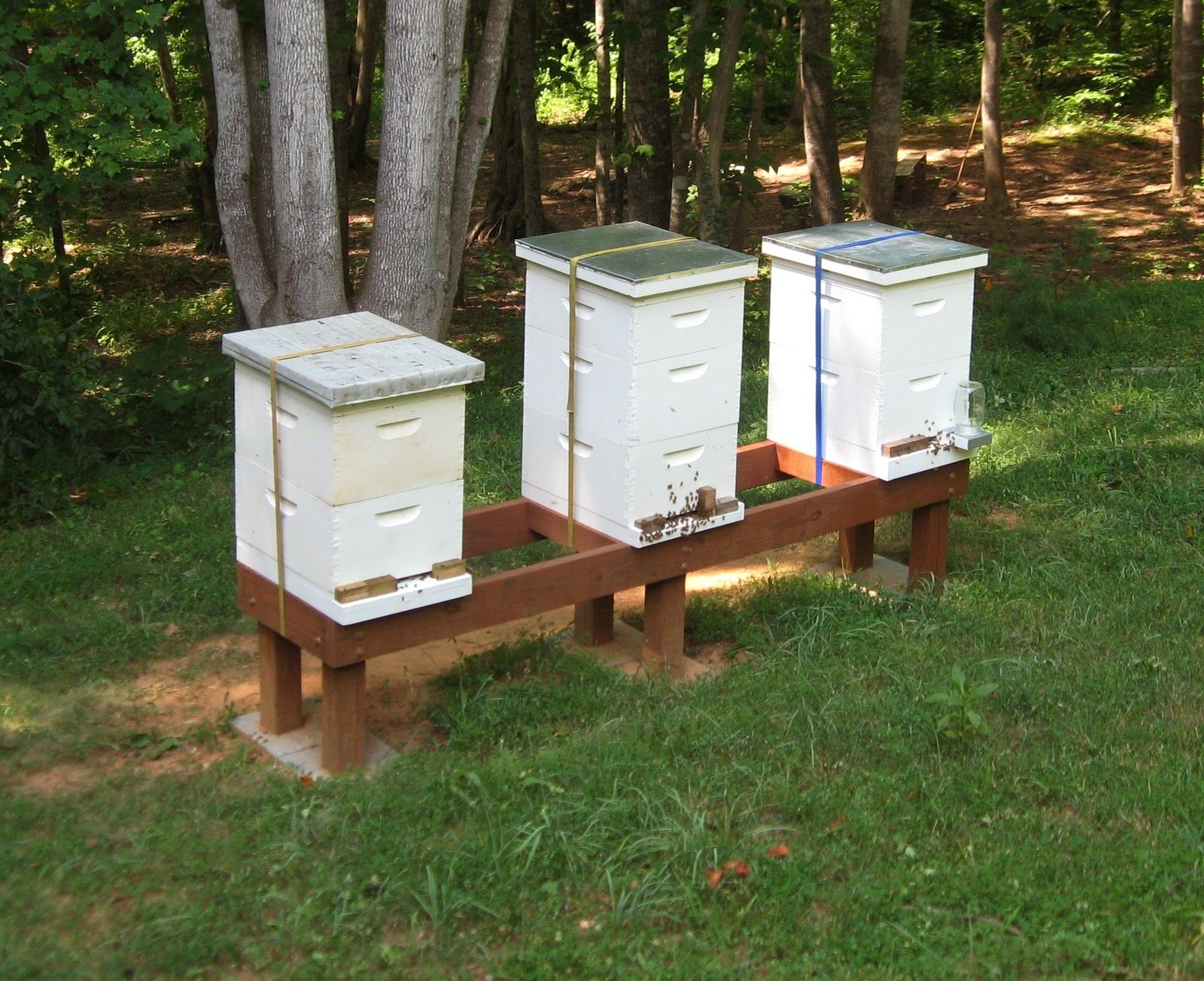 how to build a hive stand