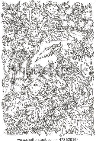 Tropical Bird On A Background Of Flowers And Fruit With Floral Doodle Pattern Coloring Book Page