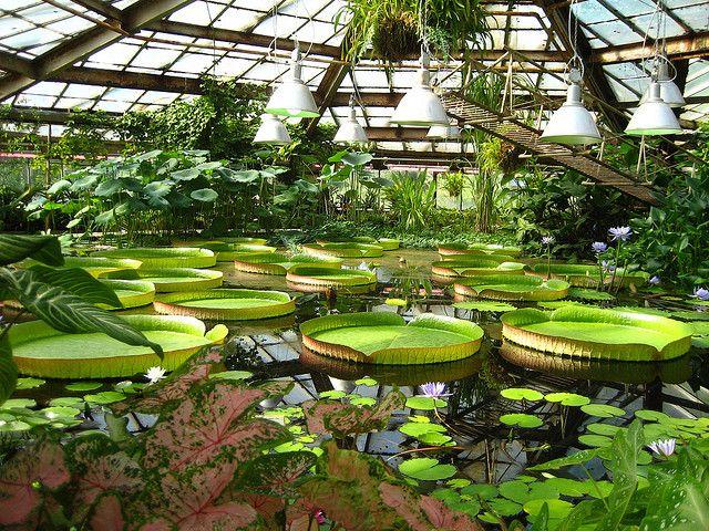 a2f48dc2b9cf7ebbe13822e9a435324d - Can You Drink Alcohol In The Royal Botanical Gardens