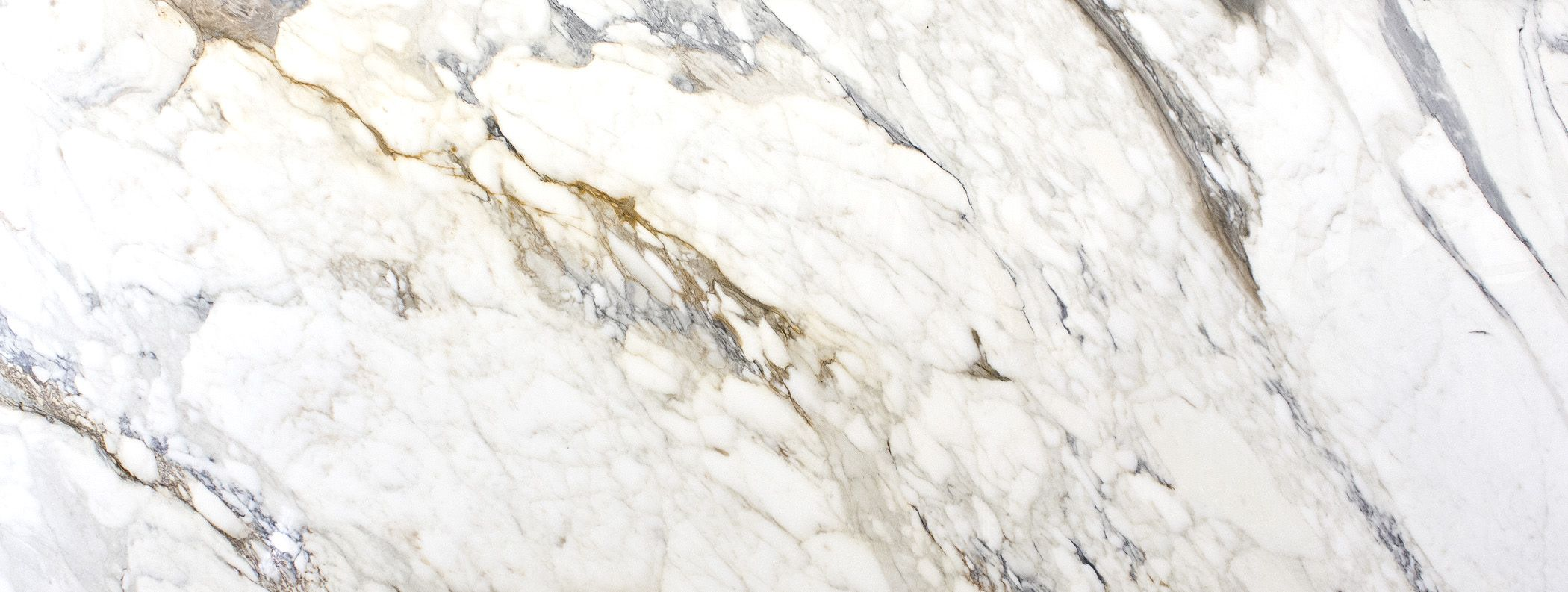 White Knight Calacatta Gold Marble Calcutta Gold Marble