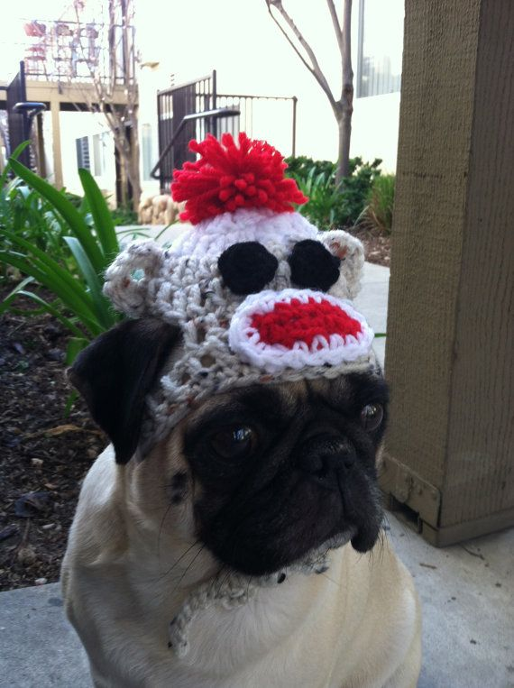 Hats for Dogs Hats for Pugs Sock Monkey Hat Hats by AVirtuousSin, $11.00