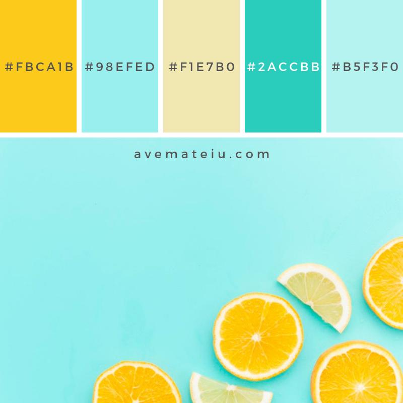 Citrus fruits slices on table. Color Palette #228