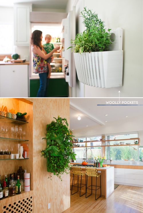Woolly Pockets Are My Favorite Modern Way To Display Herbs And Plants Indoors Herb Garden