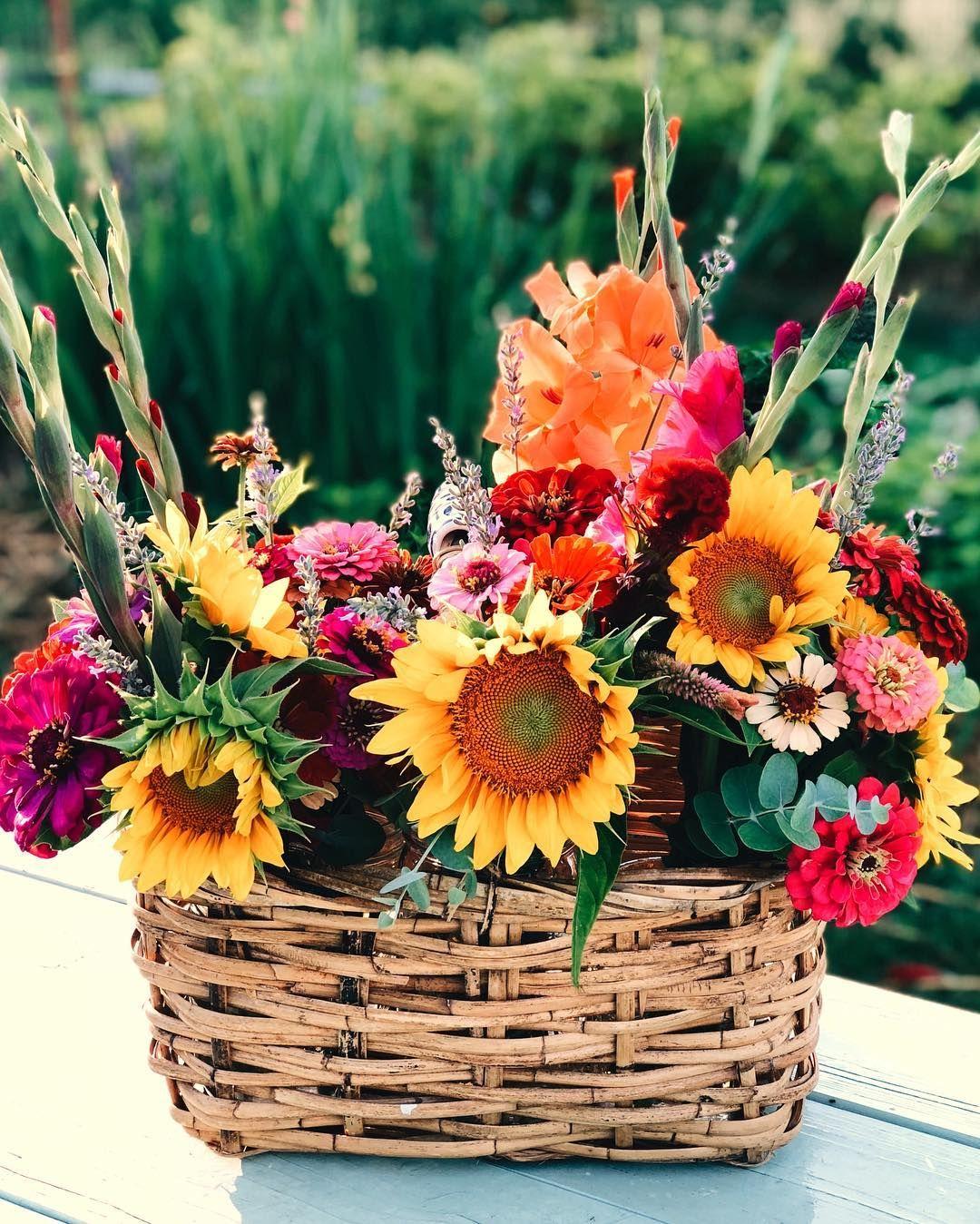 Summer basket bouquets Summer baskets, Hen farm, Flowers