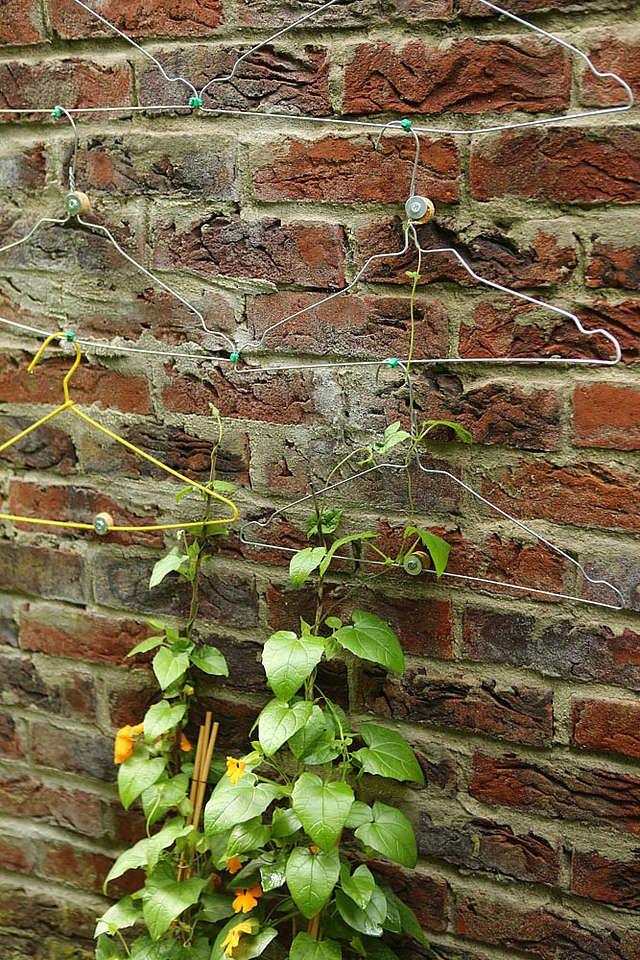 Acht geniale Tricks für alle Gärtner