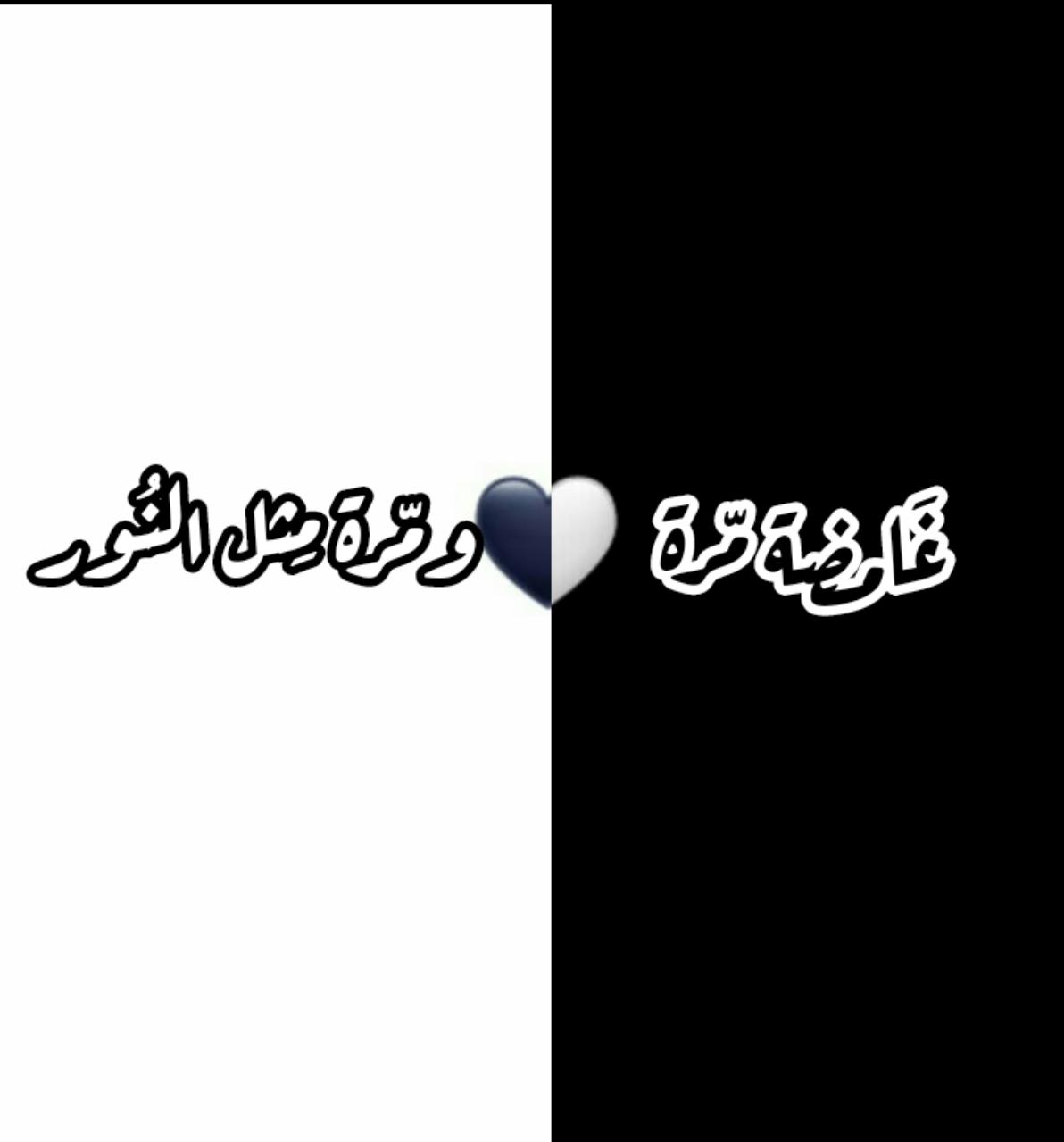 غامضة مرة ومرة مثل النور Arabic Tattoo Quotes Funny Quotes Beautiful Arabic Words