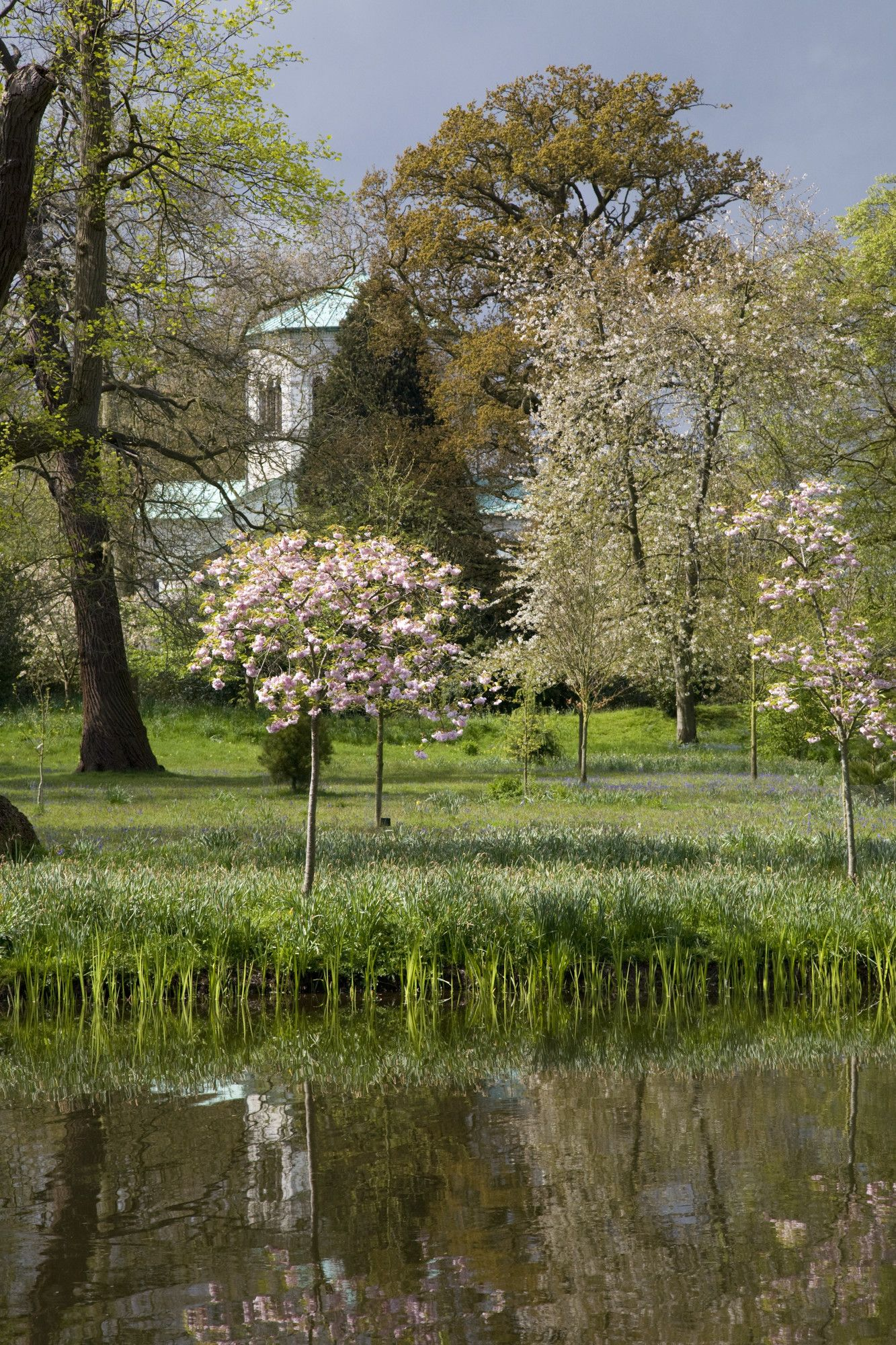 Join us at Royal Frogmore Garden in Windsor on 16th May