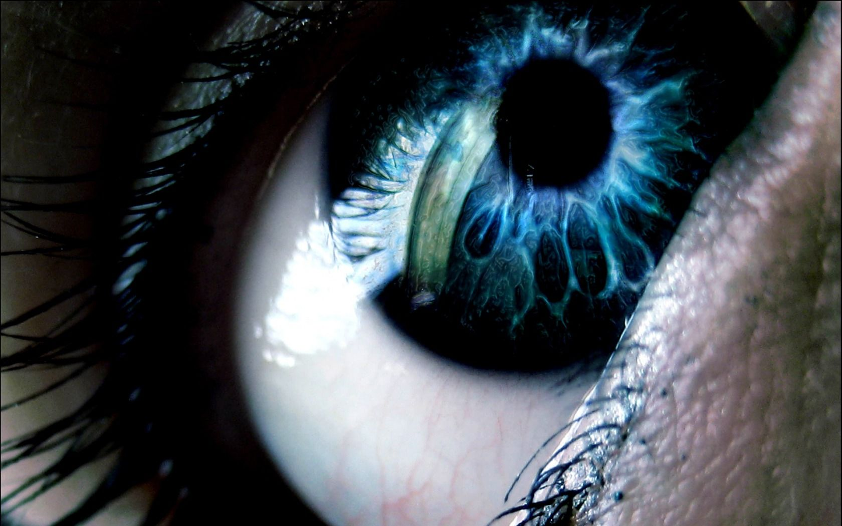 Hd wallpaper eyes - Collection Of Eyes Hd Wallpapers Http Backgroundwallpaperpics Com Collection