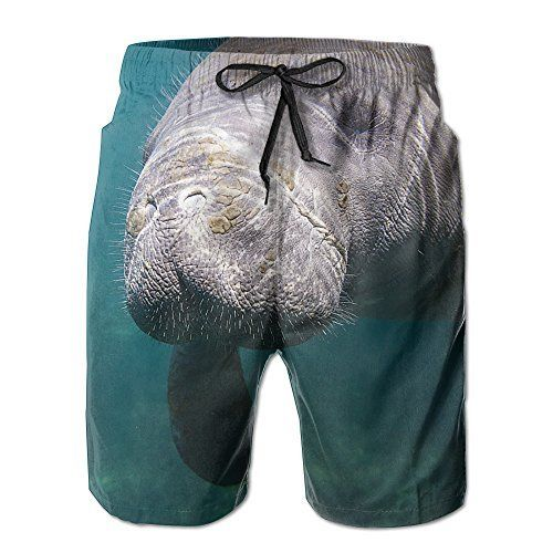 bceadea6ed68b Mens A West Indian Manatee Summer Beach Board Shorts Swimwear Trunks Quick-drying  Pants WZHICHEING