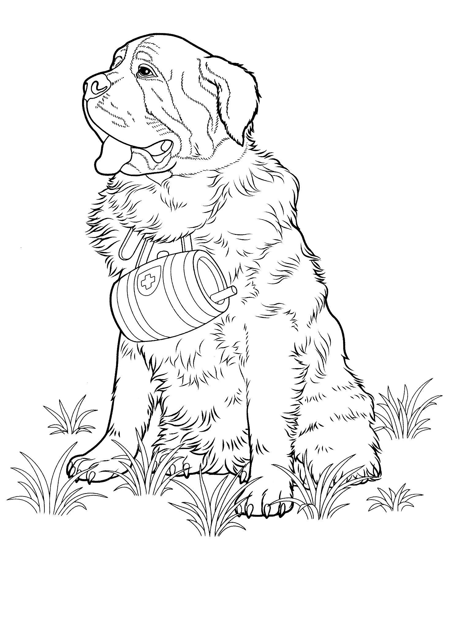 Pin On Favorite Dog Colouring Pages [ 2034 x 1482 Pixel ]