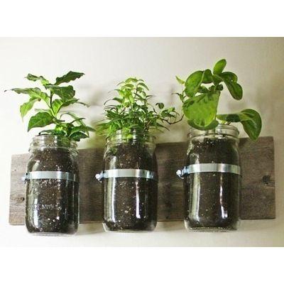 Mason Jar Wall Planter Indoor Herb Garden Mason Jar Planter