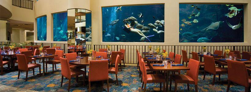 The Oceanarium Restaurant Pacific Beach Hotel Waikiki Estados Unidos Islas Viajes A