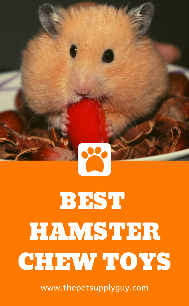 Best Chew Toys For Syrian Hamsters Hamster Syrian Hamster Chew Toy