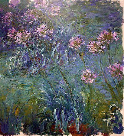 Monet - Agapanthus