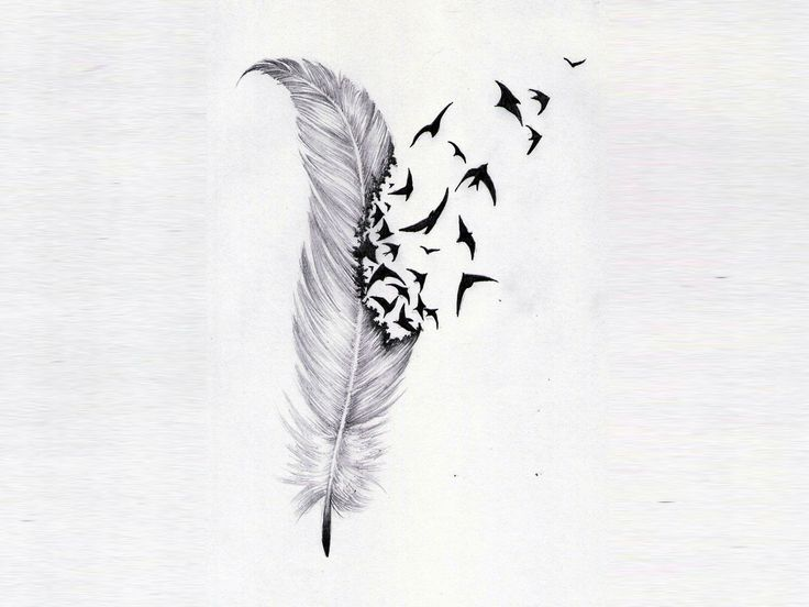 Feathers The Birds And Abstract Tattoos On Pinterest Phoenix Feather Tattoos Feather With Birds Tattoo Feather Tattoo Design
