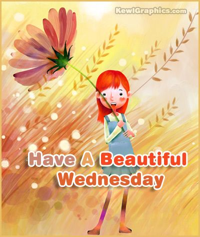 Have a beautiful wednesday graphic plus many other high quality have a beautiful wednesday graphic plus many other high quality graphics for your facebook profile at sciox Gallery