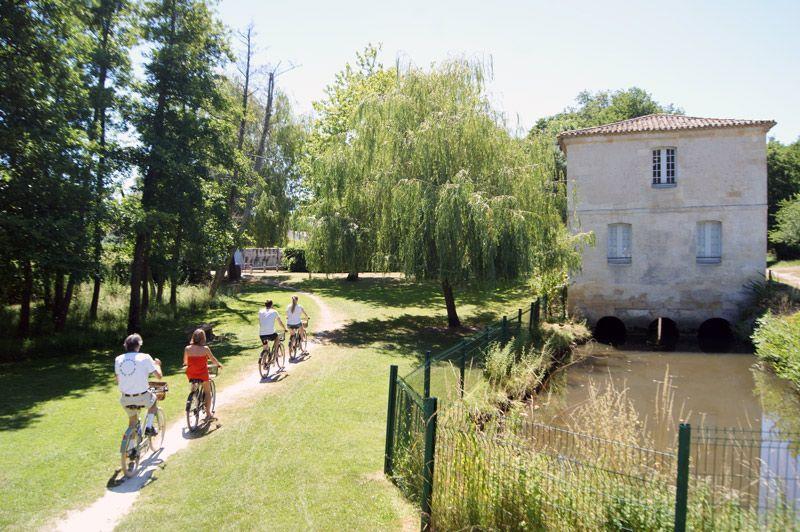 Visite et dégustation au Château Pape Clément  #bdxbiketour #biketour #bordeauxmaville #bordeaux