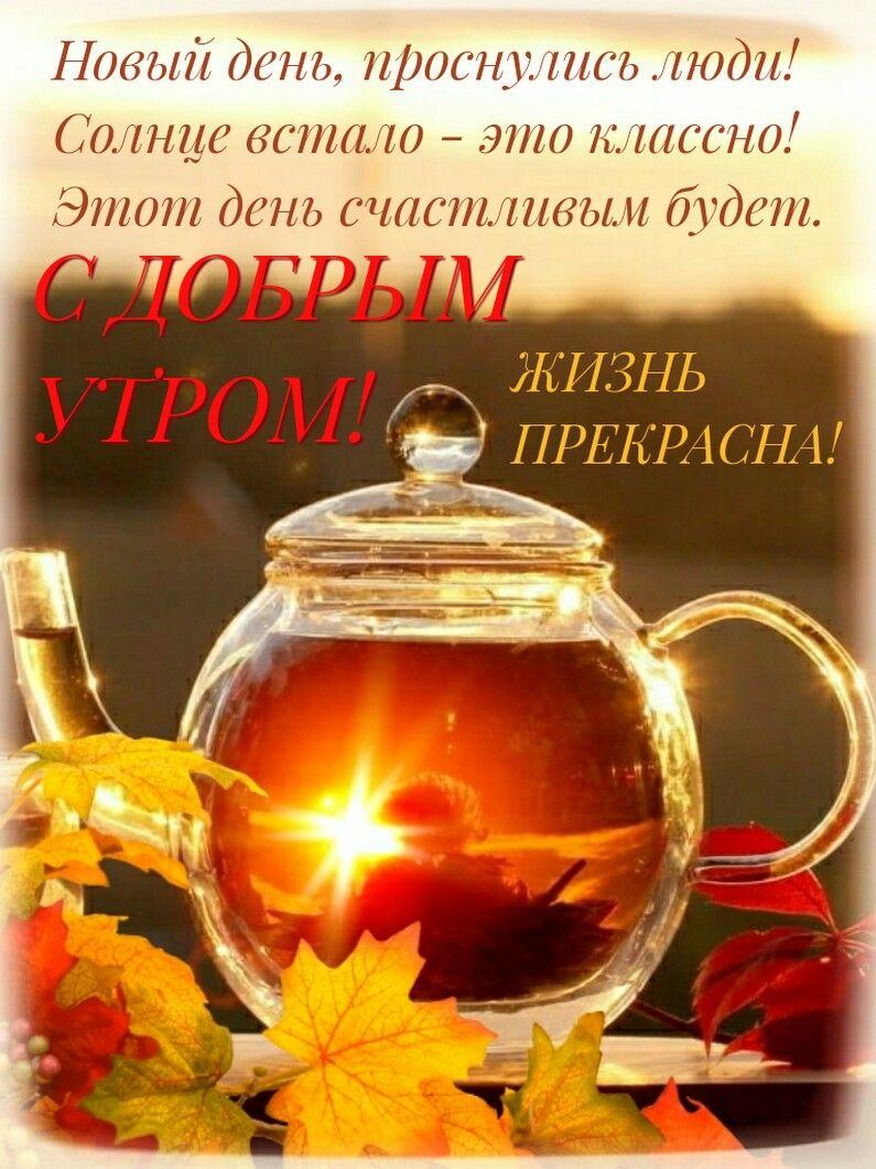 С добрым утром! (Осень) | Доброе утро, Открытки, Кошачьи ...