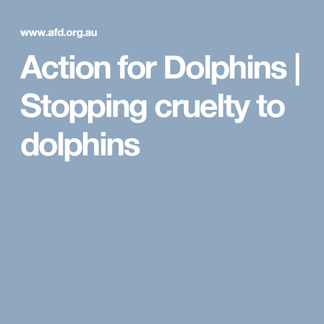 Action for Dolphins | Stopping cruelty to dolphins