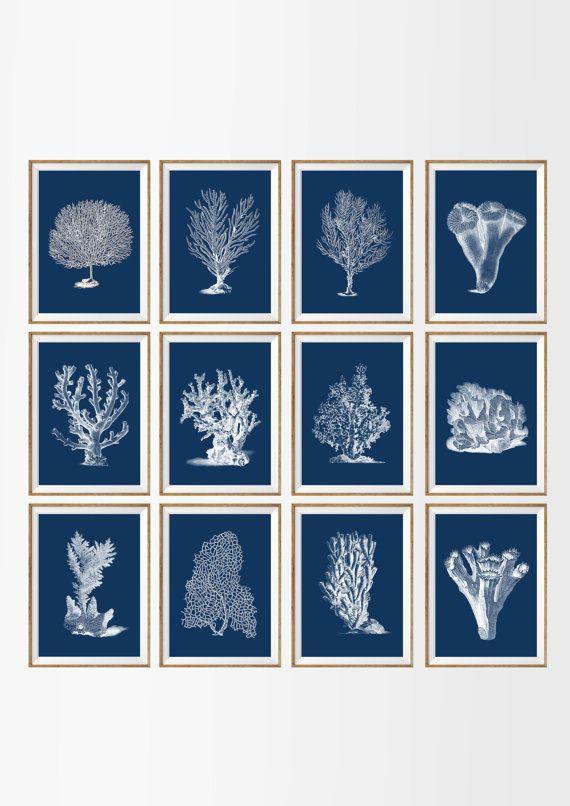 Sea coral art print Nautical art print set of 12 antique wall art coral Ocean Decor Ocean art print Home decor wall art beach Sea art print