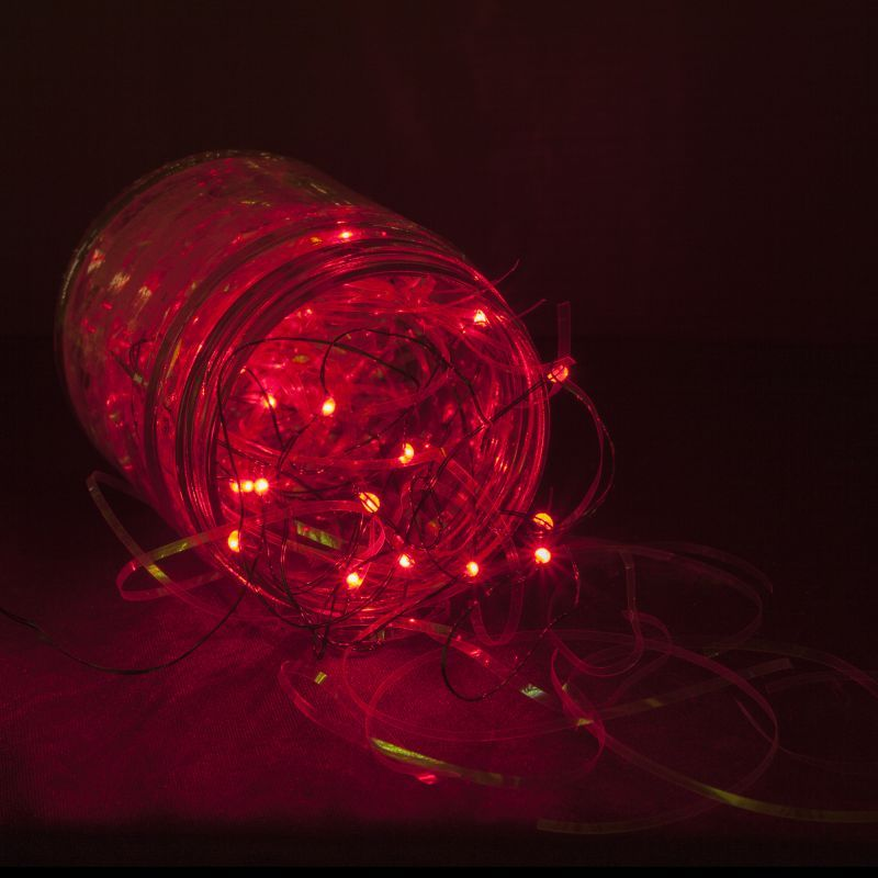 Wintergreen Lighting 50931 18 Bulb Battery Operated Red Fairy Led Lights Holiday String Null