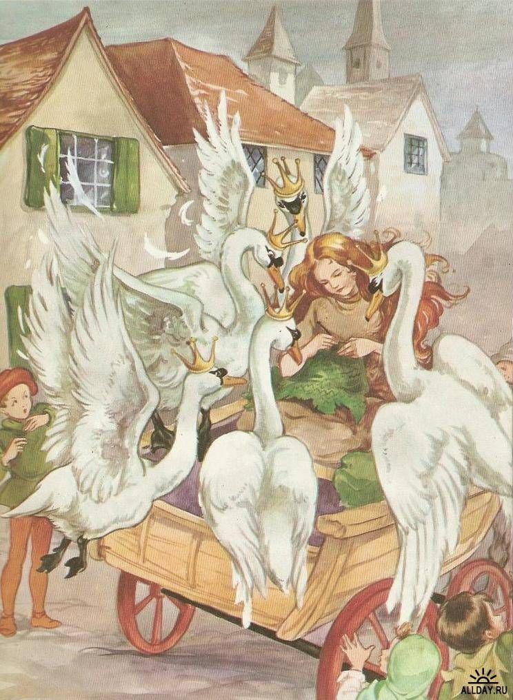 иллюстрации к сказке шесть лебедей оказываем полный