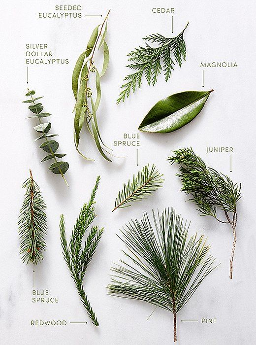 greenery staples such as pine magnolia eucalyptus and juniper make for stunning holiday greenery arrangements - Christmas Greenery Wholesale