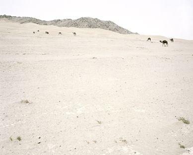 Paul Seawright - Minefields