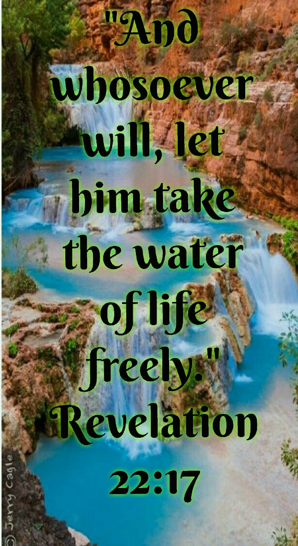 Revelation 22:17 (KJV) And the Spirit and the bride say, Come  And
