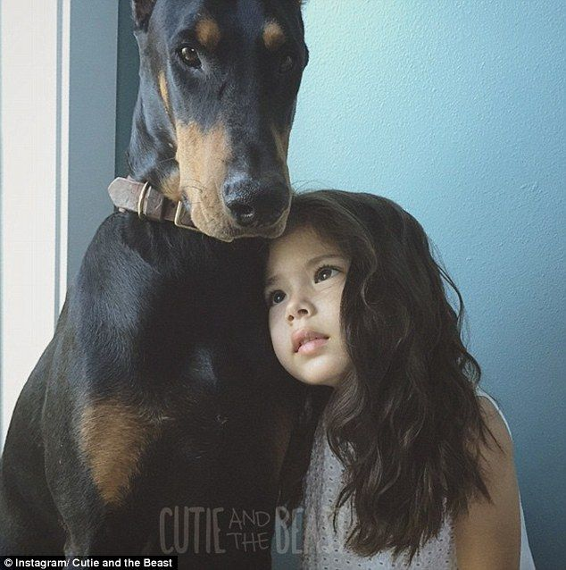 Four Year Old Girl And 80 Pound Doberman Do Everything Together