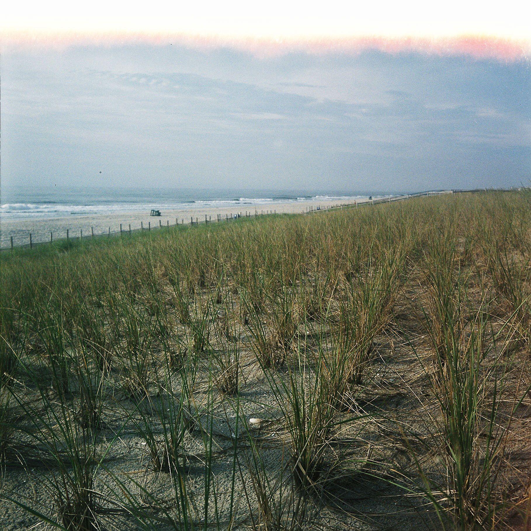 Long Beach Island New Jersey: Dunes, Long Beach Island, New Jersey