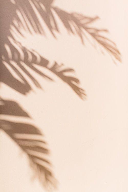 Palm Beach Travel Guide from Abby Capalbo | Photography: Erin McGinn