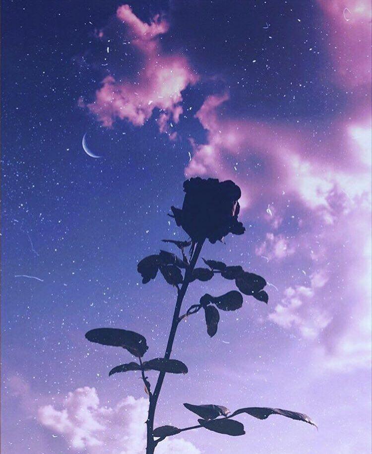 11 11 on in 2020 purple aesthetic purple