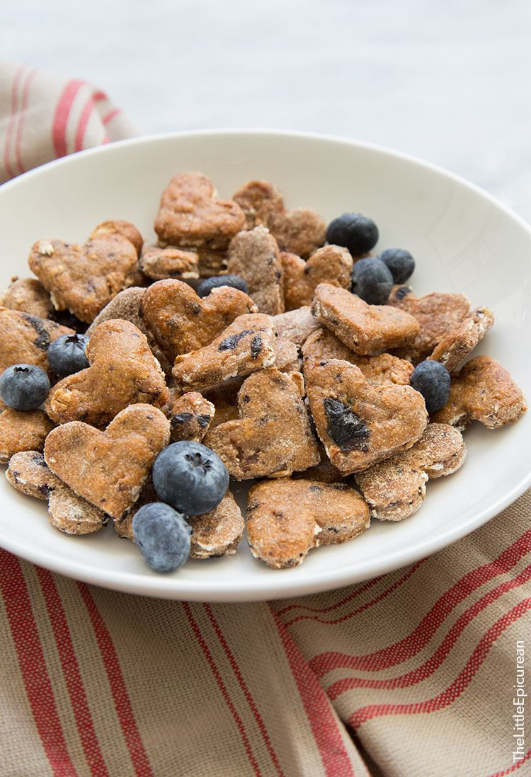Blueberry Oatmeal Dog Treats Recipe Dog Biscuit Recipes Dog