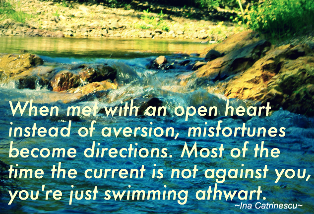 """""""When met with an open heart instead of aversion, misfortunes become directions. Most of the time the current is not against you, you're just swimming athwart."""" ~Ina Catrinescu~"""