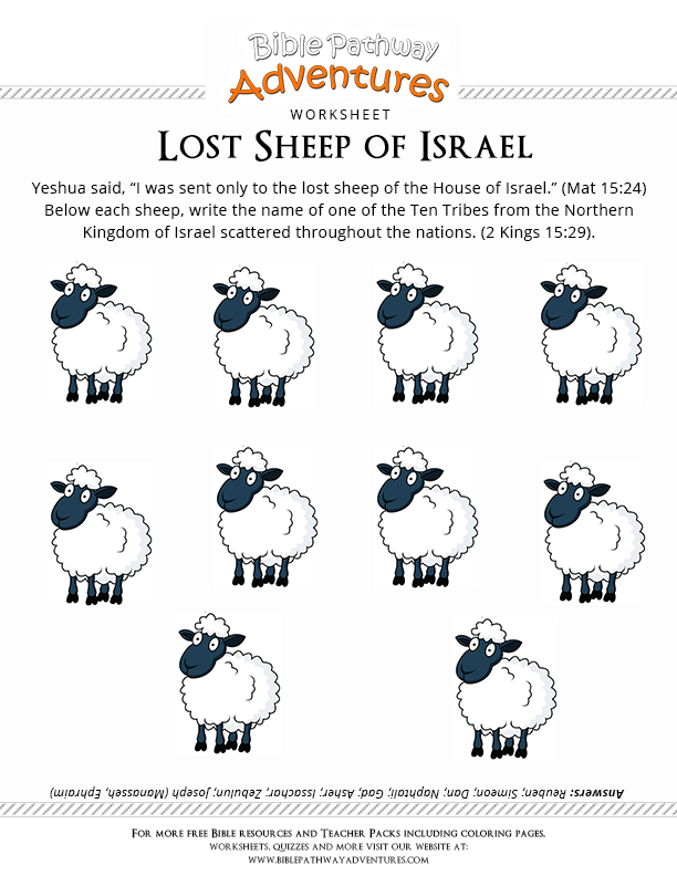 Bible Worksheet Lost Sheep Of Israel