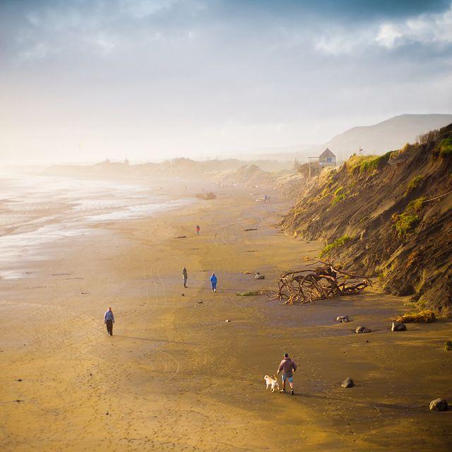 Beach Muriwai Beach Cuba Beaches Beach Trip