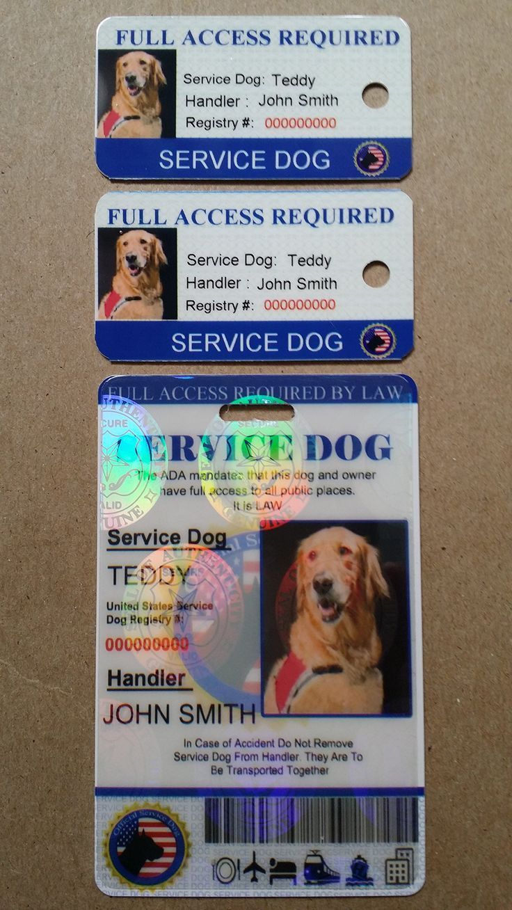 Holographic Service Dog ID + 2 Key Tags Pet