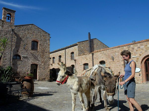 Stop at Abbazia Santa Anastasia for the aperitivo and the visit to the winery. Madonie mountains, Sicily http://homemadesicily.com/en/activities/trekking-with-donkeys/