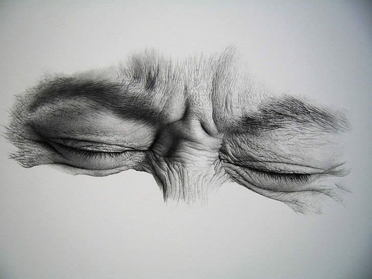 30 realistic pencil drawings and drawing ideas for