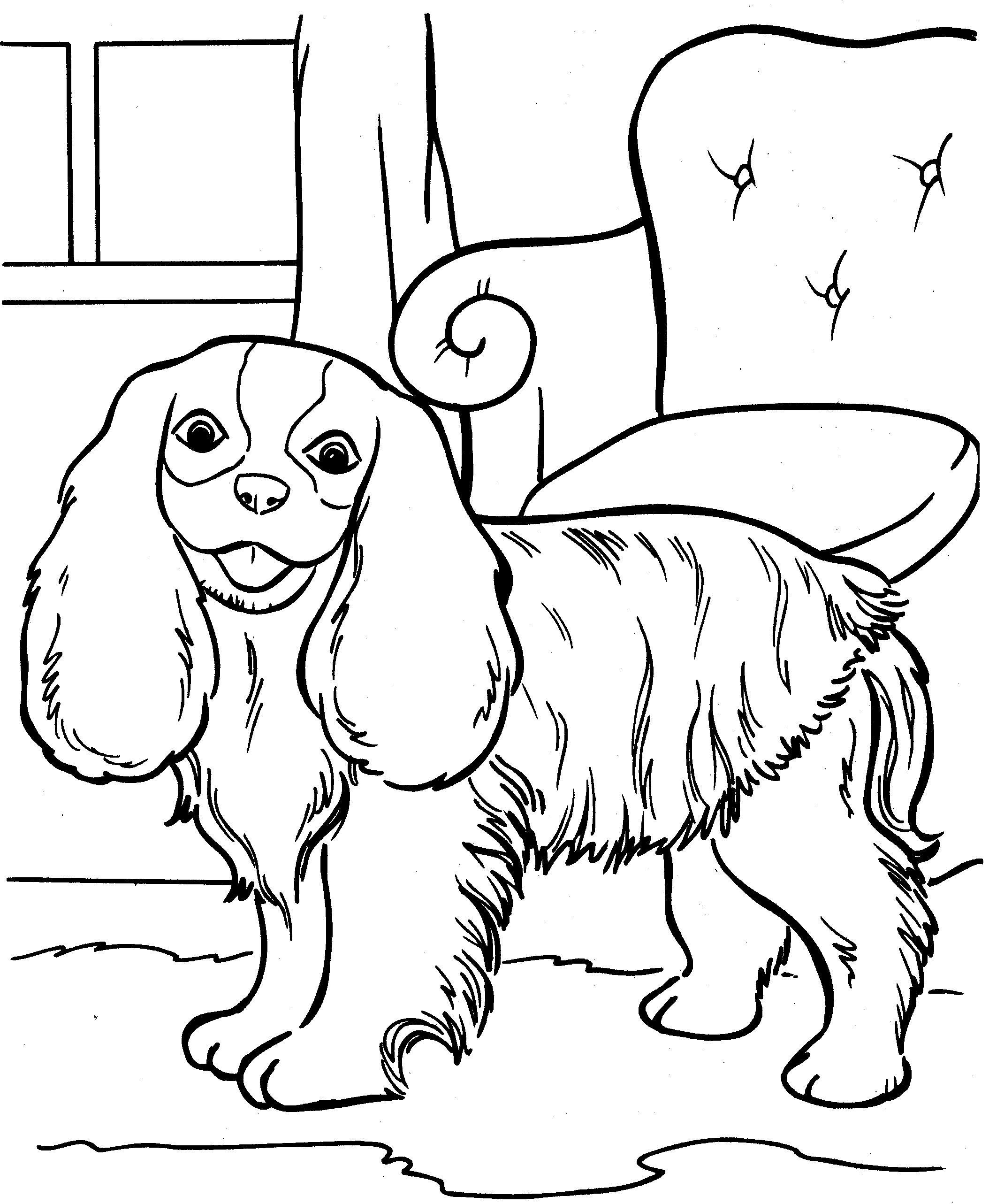 Kleurplaat Honden Kleurplaat 8893 Kleurplaten Honden Huisdieren